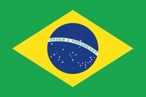 巴西探亲签证