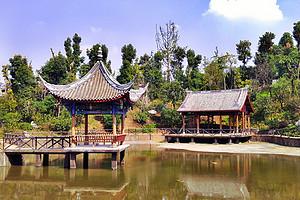 璧山凤凰花海+秀湖公园+湿地公园一日游