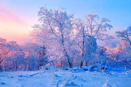 东北白色印迹冰雪哈尔滨激情亚布力梦幻雪乡双飞5日游