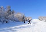 厦门出发_厦航哈尔滨冰雪大世界亚布力雪地真温泉度假 6日