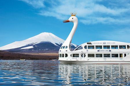 白鹭会员专享_芝樱巡礼日本本州经典双古都富士花季温泉六日游