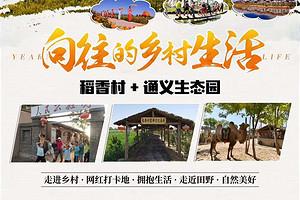 寧夏稻香村+通義生態園