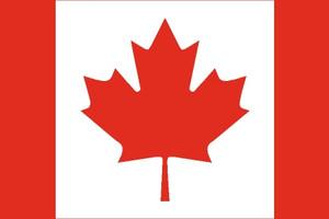 加拿大探亲访友签证