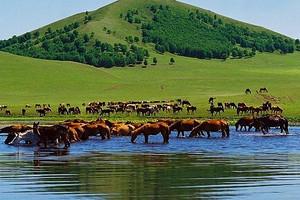 重庆到内蒙古旅游攻略_重庆到内蒙古大草原、响沙湾双飞5日游