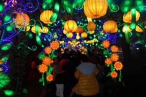 重庆到四川旅游_重庆到自贡旅游/恐龙博物馆/灯会/古镇二日游