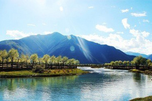 拉萨+鲁朗林海+羊湖去卧回飞10日游_重庆去西藏旅游路线