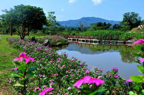 旅游攻略 > 正文  中国科学院西双版纳热带植物园绿石林景区面积225