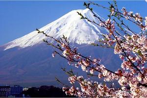 【日本发现之旅直飞7日】名古屋进出 全程无自费