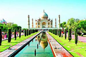 印度一年多次电子签证办理(北京办理 全国受理)