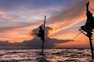 【迷·斯里蘭卡6晚8天深呼吸之旅】一價全含 無自費
