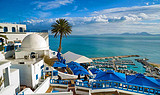 【尊悦·北非-埃及+突尼斯12日游】埃及航空,全程五星酒店