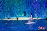 郑州到广东 长隆动物园、欢乐世界、水上乐园 纯玩双卧5日游