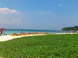 郑州到三亚5日游|美食盛宴
