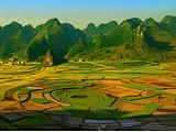 【赏花季 百里杜鹃】郑州到贵州双卧九日游