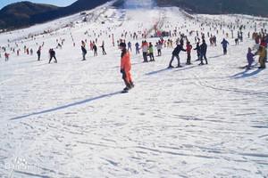 【伏牛山纯玩滑雪】郑州到伏牛山滑雪纯玩两日游