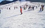 【郑州周边滑雪游】天龙池滑雪一日游