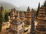 【郑州出发】少林寺、龙门石窟一日游_郑州到少林寺龙门石窟旅游