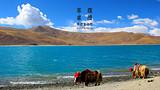 郑州到西藏尊享纯玩拉萨-林芝巴松错-大峡谷-日喀则双卧11天