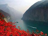 长江三峡涉外五星豪华邮轮宜昌进,重庆出上水至尊七日游郑州往返