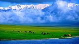 【圆梦新疆】乌鲁木齐、天池、吐鲁番、喀纳斯双卧11日