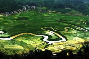 散客天天发:巴马百鸟岩,长寿村,水晶宫纯玩二日游