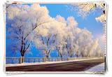 魅力江城吉林、雾凇岛、中国雪乡、亚布力激情滑雪、冰城哈尔滨双