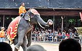 泰国五晚六天品质游