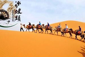 20人團寧夏沙坡頭一日游導游服務