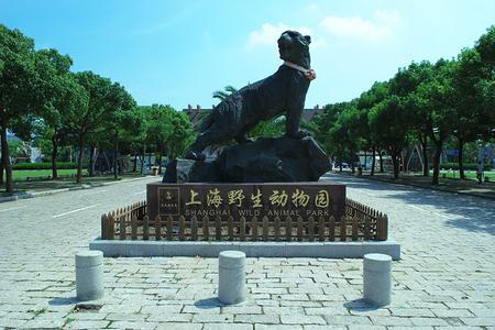 <上海野生动物园一日游>【独立成团】