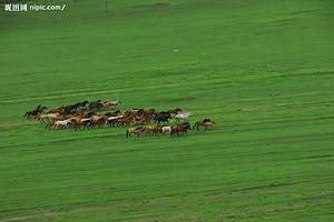 穿原踏海—北戴河、避暑山庄、小布达拉、乌兰布统草原双高六日游