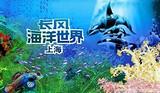 上海海洋世界一日游【独立成团】