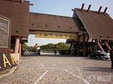 【中达】上海野生动物园一日游