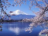 本州双古都富士山温泉特惠6日]<升级1晚优质温泉酒店>