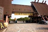 【中达旅游特供】上海野生动物园一日游