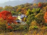 [徽州二日]塔川秋色·赏徽州最美的秋天-黄山·醉温泉