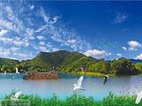 [湖州一日游]<图影湿地文化园-十里银杏长廊—古银杏村>