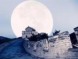 [北京五日游]<天安门广场-故宫博物馆-八达岭长城-颐和园>