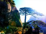 [黄山三日]<古城岩风景区-黄山风景区-醉温泉-徽州大峡谷>
