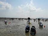 【福州亲子五日游】<中国云顶,罗源海洋世界,滩涂赶海>