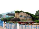 【无锡一日】<巡塘古镇-鼋头渚-太湖观鸟-特色荷花宴>