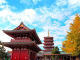 [日本六日]<伊豆温泉-京都和服体验-海上巡游-艺伎晚宴>