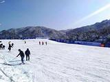 【芜湖五星纯玩三日游】<滑雪世界-大浦乡村世界-皖南川藏线>