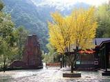 [宁波三日]<奉化溪口-雪窦山峡谷穿越-浙东小九寨-九龙湖>