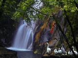 [天台+神仙居三日]<梦幻仙境-大神仙居-国清寺-龙穿大瀑>