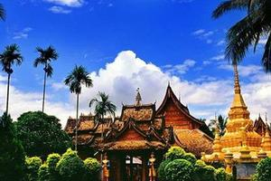 【西双版纳双飞五日】<傣族园-野象谷-原始森林-热带花卉园>