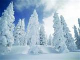 [哈尔滨双飞6日]<冰雪大世界-雾凇长廊-万科滑雪-长白山>