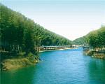 天目湖山水园-南山竹海-御水温泉2日游【上海出发】
