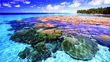 【芽庄双飞6日】珊瑚岛-蚕岛-天堂湾-矿物泥浆浴-五指岩