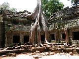 【柬埔寨5日游】吴哥窟-班蒂丝蕾古剎-大吴哥城