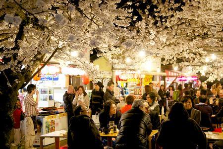 【日本经典】畅游: 名古屋/大阪/京都/奈良/富士山/东京